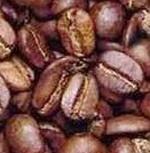 kava%28coffea%29.png