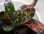 biljke ukrasnog lisca